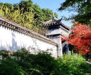 Tiger Hill Garden