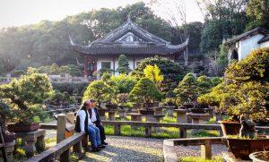 Unesco Garten